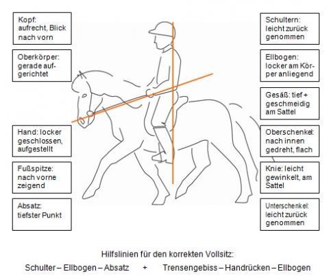 Regel für den richtigen Sitz - (reiten, Reitsport, Aussitzen)