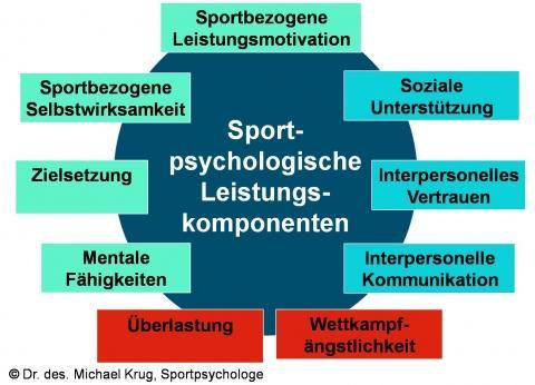 - (Psychologie, Sportpsychologie, Fragebogen)