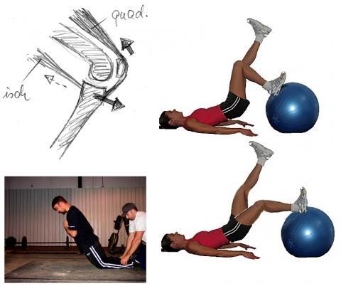 - (Krafttraining, Muskelaufbau, Eigengewicht)
