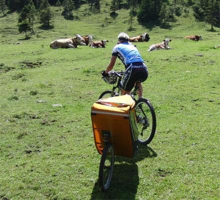 - (Mountainbike, Kinder, Kinderanhänger)