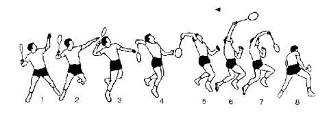 - (Badminton, Ballgeschwindigkeit, Schmettern)