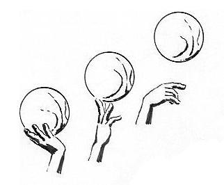 Bild 1 - (Basketball, Liegestütze, Finger)
