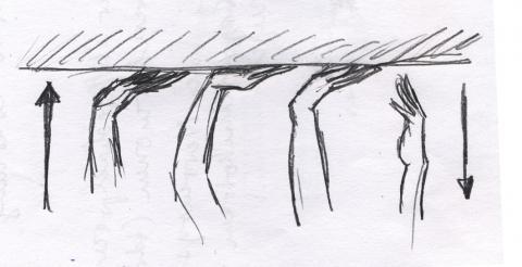 Bild 2 - (Basketball, Liegestütze, Finger)