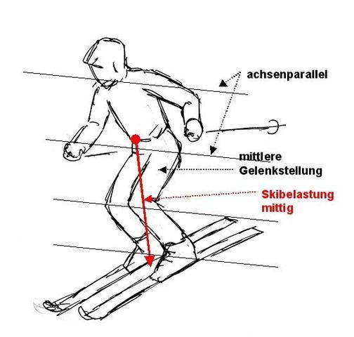 Grundposition alpin - (skifahren, Ski, schi)