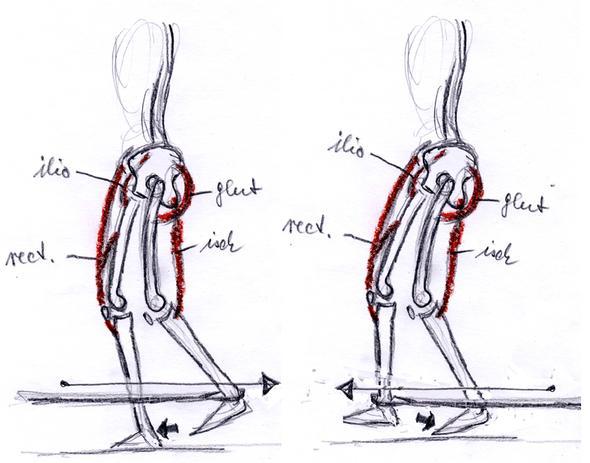 Übungen (Seilzug, Theraband) zur Kniestabilisierung - (Operation, Kreuzbandanriss)