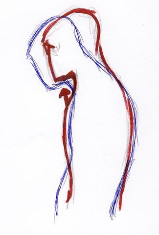 Abbildung 1 - (Training, Muskeln, Übungen)