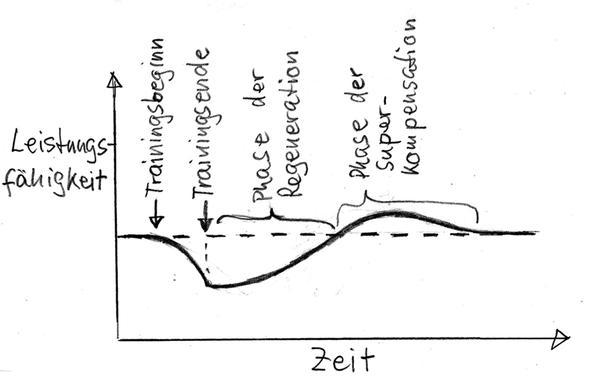 Bild 1: Superkompensation a - (Training, Superkompensation)