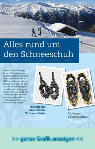 Vorschau Infografik Schneeschuhwandern - (Schneeschuhe, Schneeschuhwandern, Qualität Schneeschuhe)