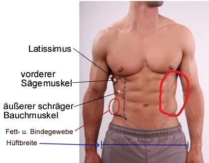 Taille und Hüftbreite - (wichtig, seitliche Bauchmuskulatur)
