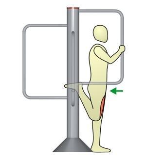 Dehnung der Beinstrecker im Stand - (dehnen, Dehnübungen, muskelgruppe)
