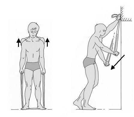 Bild 2 - (Schulter, Impingement)