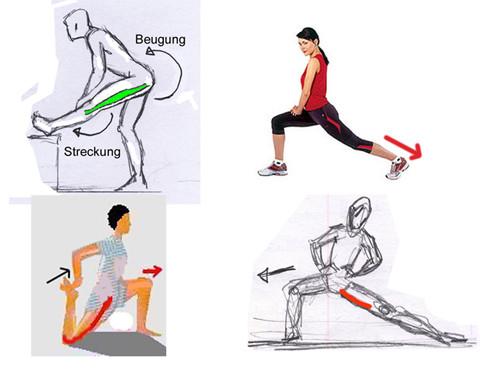 Dehnübungen für die Beinmuskeln - (dehnen, Spagat)