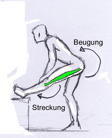 Dehnübung für die Hamstrings - (dehnen, Beweglich)