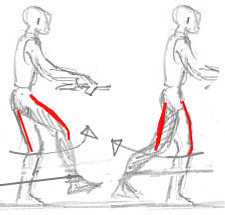 Bild 2 - (Muskeltraining, Sprunggelenk, Oberschenkelmuskulatur)