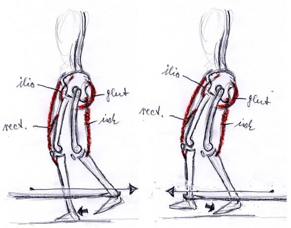 Bild 2 - (Krafttraining, Sport, Muskelaufbau)