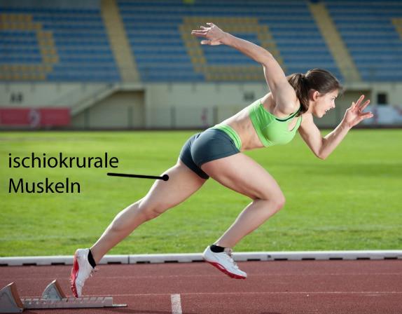 Bild 1 - (Leichtathletik, Sprint, Wurf)