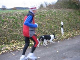 Bilduntertitel eingeben... - (joggen, Hund, Joggen mit Hunden)