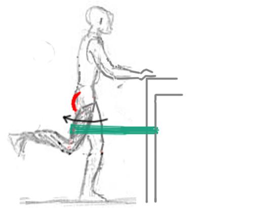 - (Krafttraining, Beine, Oberschenkel)