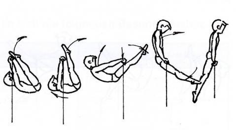 Kippaufschwung vorlings vorwärts am Reck (nach Arnold/Leirich 2005) - (reck, Reckturnen, Kippaufschwung)