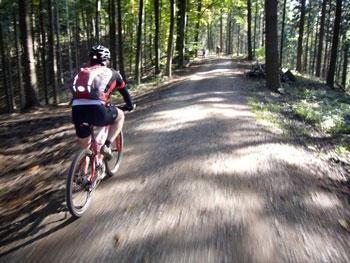 Bilduntertitel eingeben... - (Mountainbike, Geschwindigkeit, schnell)