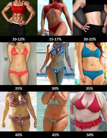 Zwischen 35-40%. Ich möchte gerne auf zwischen 15-25% kommen. - (Muskeln, fett)