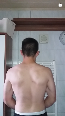 Bild - (Sport, Fitness, Muskeln)