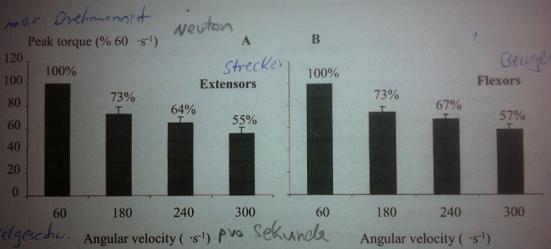 Isokinetic Test Abb - (Kraft, test)