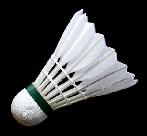 - (Badminton, Federball, Feder)