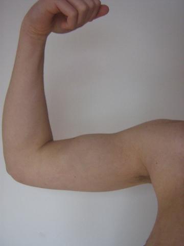 Angespannt 25 cm - (Training, Krafttraining, Muskeln)
