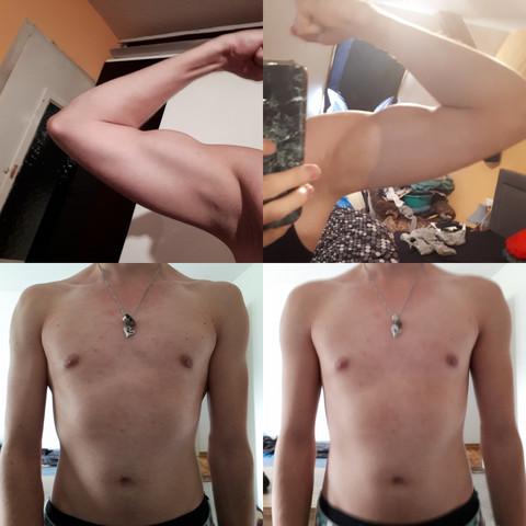- (Training, Muskelaufbau, Fitness)