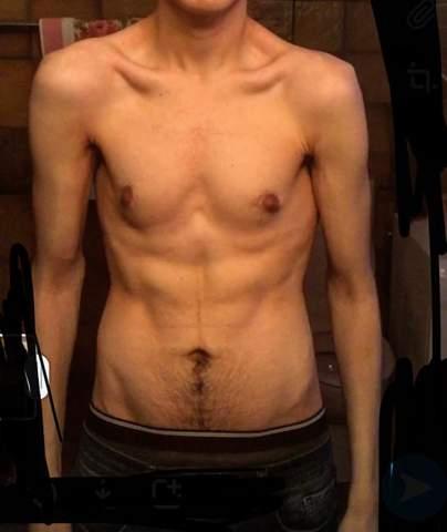 - (Training, Ernährung, Muskeln)