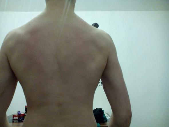 Rücken - (Training, Körper)