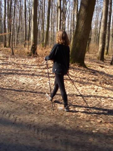 Bilduntertitel eingeben... - (Krafttraining, Nordic-Walking, Walking)